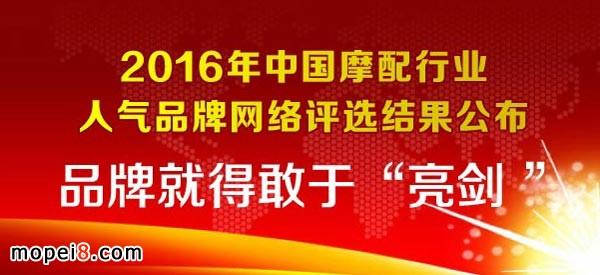 2016中国摩托车配件行业人气品牌公布