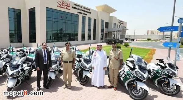迪拜的禁摩令