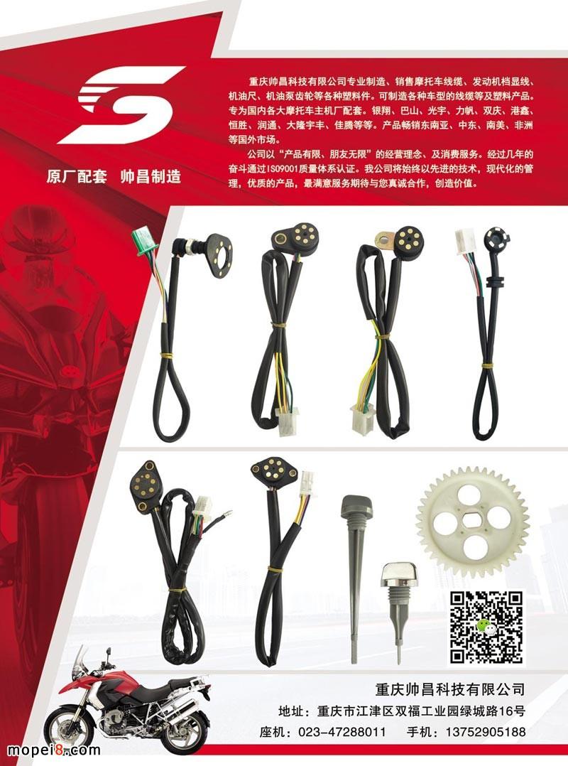 中国摩托车配件-发动机档显线束